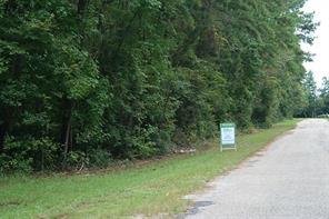 Houston Home at 2021 Bitter Creek Drive Shepherd , TX , 77371 For Sale