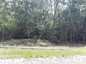 Houston Home at 21.99 Acres Superior Road Magnolia , TX , 77354 For Sale