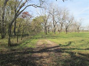 0 Yu Jones Road, Thompsons, TX 77481