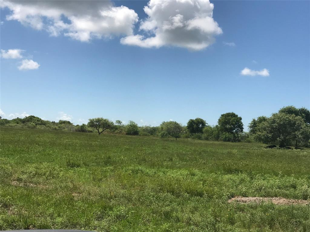 PRICE REDUCED - MOTIVATED SELLER!  140 + Acres with Bay Front in Calhoun County - 103 Feet on the bay with bulkhead, ponds, springs, and wildlife.  Bring your horses, run your cattle or just hunt and fish and build your home on the bay front.  Great location and unrestricted - Perfect for your personal oasis or a developer's dream!  Owner continues to clear and improve property.