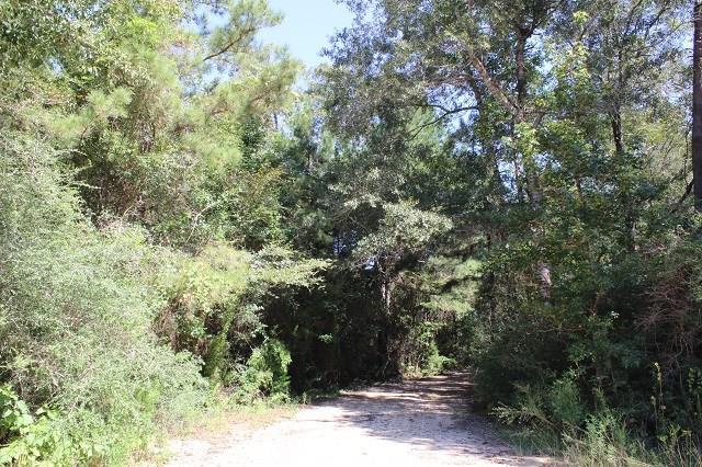 000 S Timberlakes Road, Warren, TX 77664