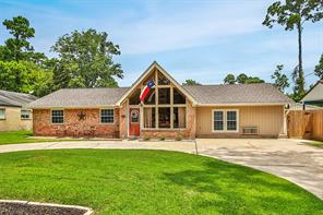 520 Chateau Woods Parkway Drive, Conroe, TX 77385