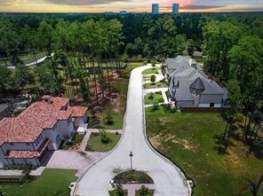 Houston Home at 8 Honey Daffodil Place The Woodlands , TX , 77380-3770 For Sale