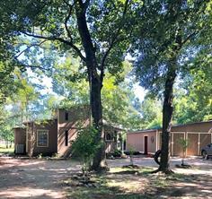 16861 Live Oak Branch Drive, Porter, TX 77365