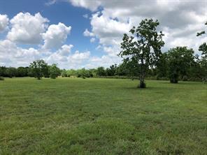 tbd county road 4893, dayton, TX 77535