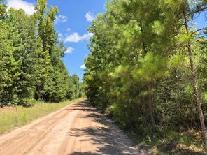90 howell road, corrigan, TX 75939