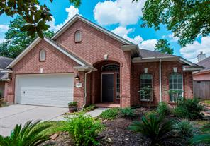 27 Currymead, The Woodlands, TX, 77382