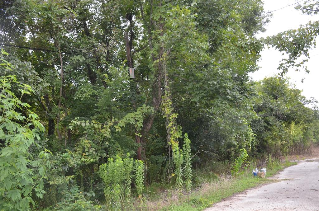 Wooded 10 acres near Hardy Toll Rd.  Possibility of additional 5-10 acres.