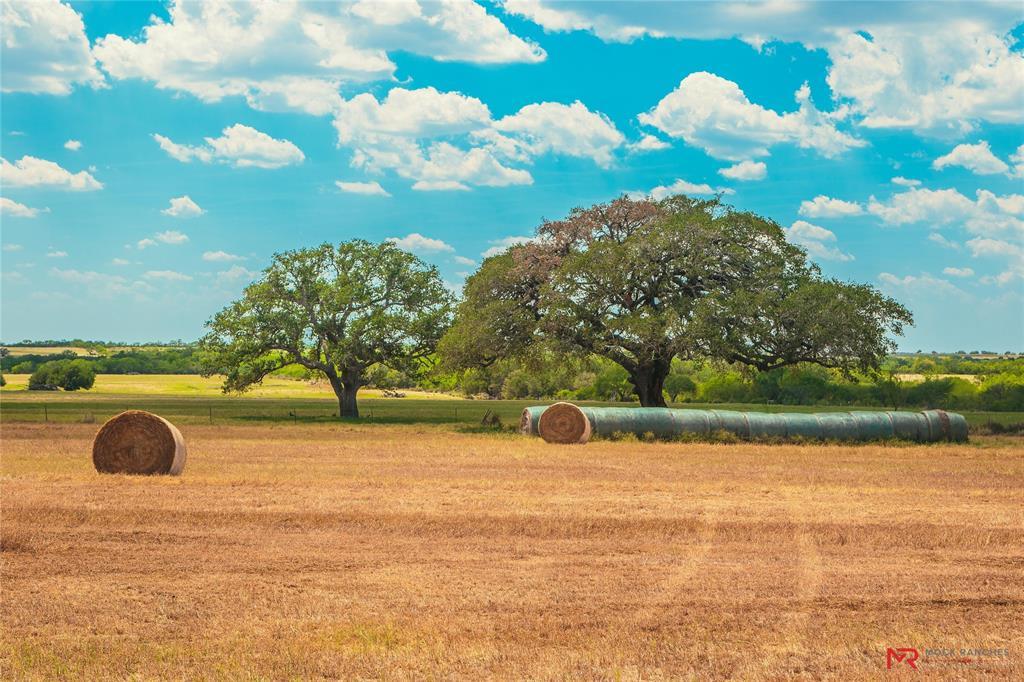 TBD CR 164, Kenedy, TX 78119