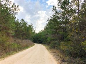 140 tom marsh road, livingston, TX 77351