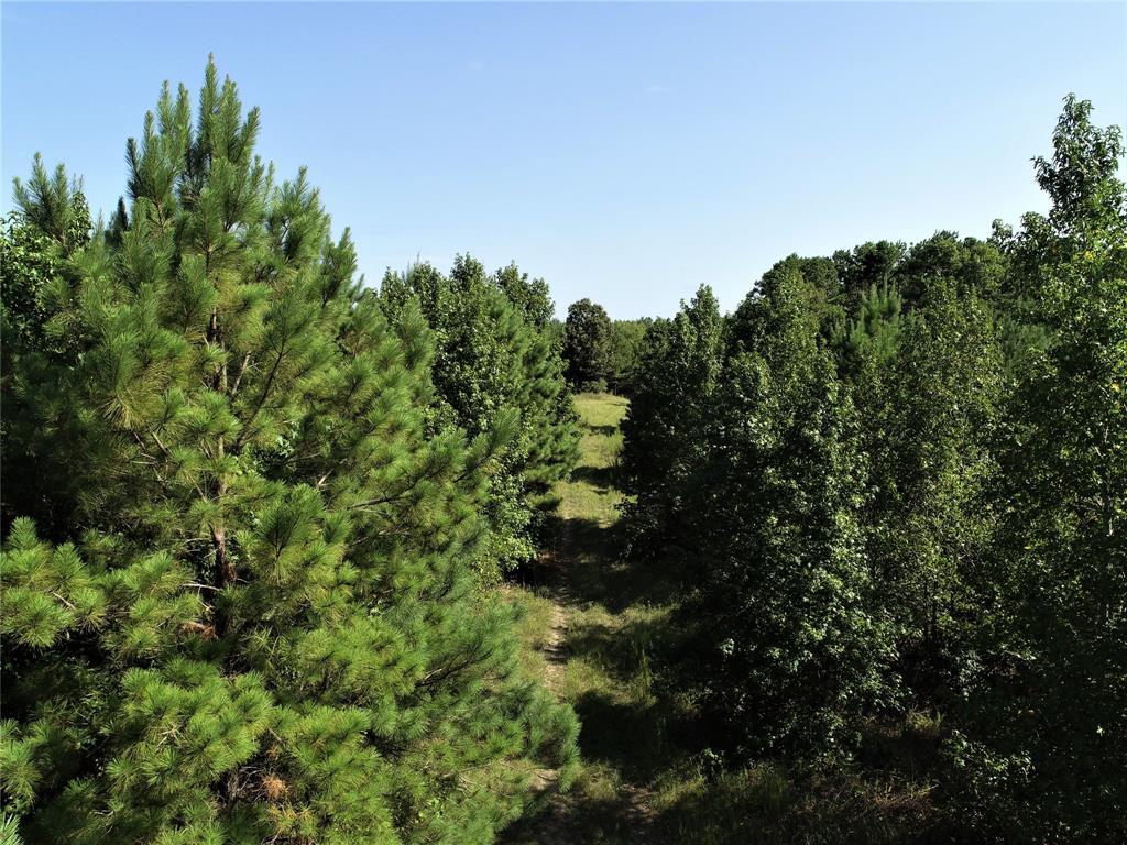NA Groveton Flat Prairie Road, Groveton, TX 75845