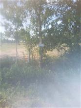 35899 Whit Williams Rd, Pattison, TX, 77423