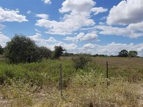 Houston Home at 0000 Fm 180 Ledbetter , TX , 78946 For Sale