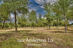 1101 Anderson, Brenham TX 77833