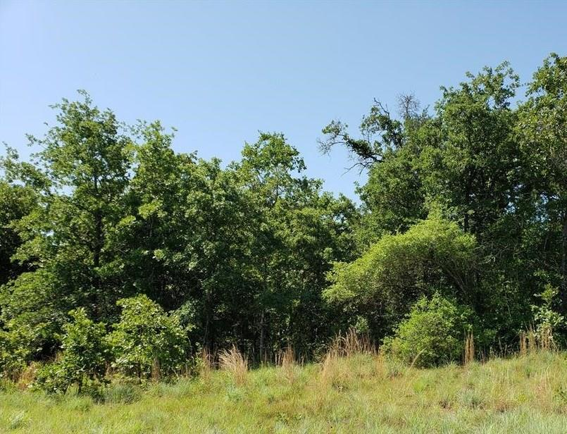 27 Acres CR 330, Milano, TX 76556