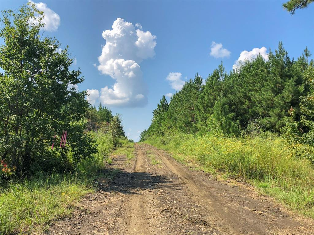 667 Ac Easement Road, Woodville, TX 75979