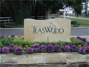 Houston Home at 7393 Teaswood Drive Conroe , TX , 77304 For Sale