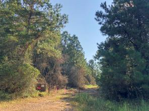 170 ac county line road, livingston, TX 77351