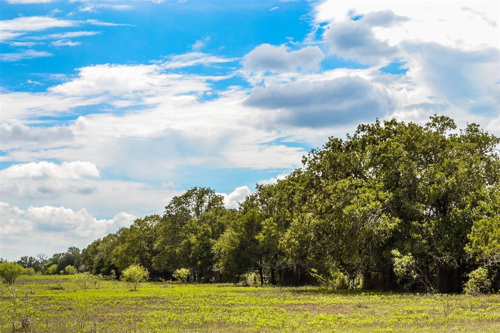 000 County Rd 401 Road, Flatonia, TX 78959