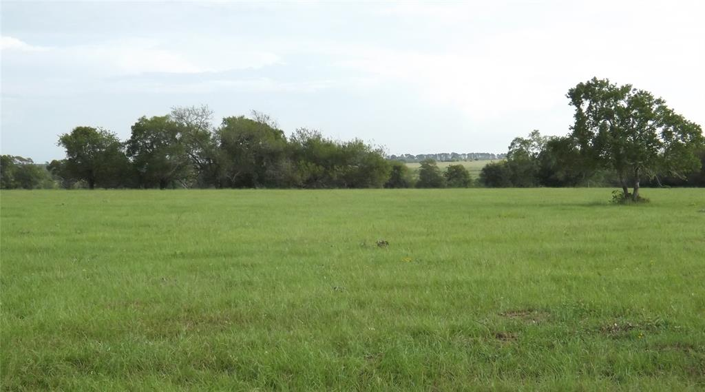 Cat Spring property with endless possibilities right off I-10! This pretty 33+ acre undeveloped land is fenced on 3 sides and cross fenced. Nice terrain level in the front w/ nice pitch and roll at the middle of the property towards the back. Scattered trees throughout entire property. Lot of wildlife in this area w/ creek on the e. boundary that attract deer & doves. Income producing from billboards & ag lease $3325/yr, min. neg. w/ acceptable offer. Unrestricted for comm. development.