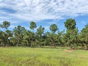 102 Timber Road 14, Woodville, TX 75979