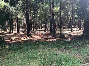 0 Sugar Pine, Houston, TX, 77090