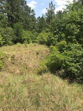 0 perry dr, coldspring, TX 77331