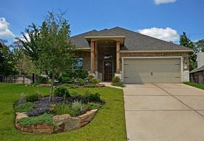 Houston Home at 126 Black Swan Place Magnolia , TX , 77354-3352 For Sale