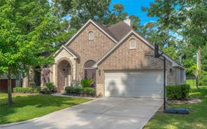 12515 Lakeview Drive, Montgomery, TX 77356