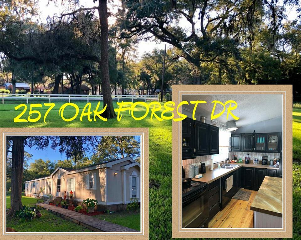 257 OAK FOREST DRIVE, Van Vleck, TX 77482