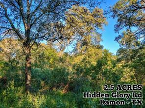 2.5 ac Hidden Glory, Damon TX 77430