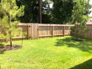 Backyard is lush and green with Privacy Fence and Rear Gate