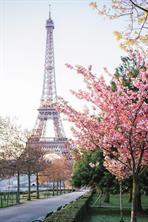 Houston Home at 10 Rue Lacordaire 001 Paris , 75015 For Sale