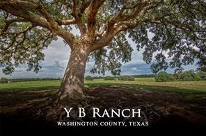 13409 mertins creek road, brenham, TX 77833