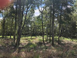0 Oak Bend, Alvin, TX, 77511