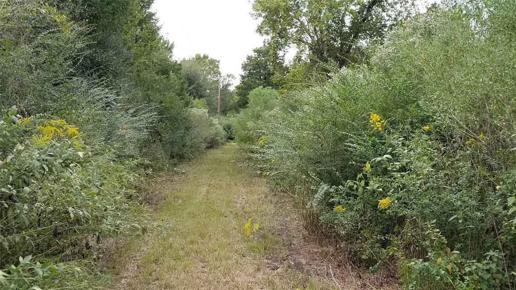0 Meadow Brook Lane, Waller, TX 77484