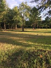 tbd farm road 943, livingston, TX 77351