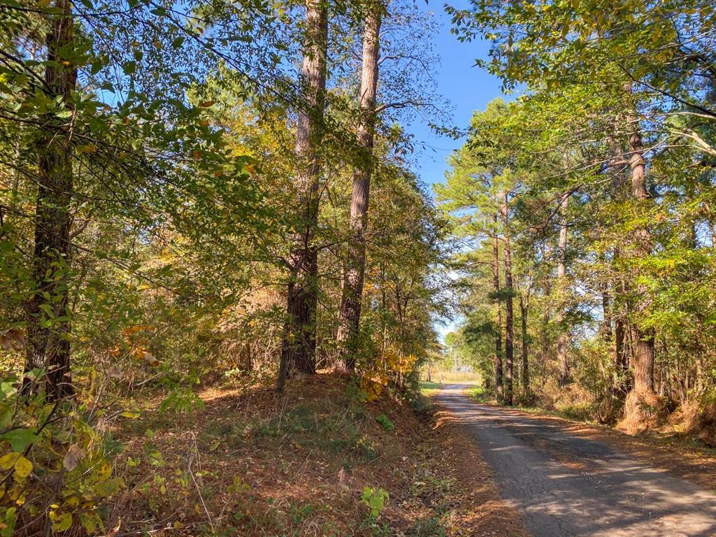 251 Ac Lightfoot Road, Lufkin, TX 75901