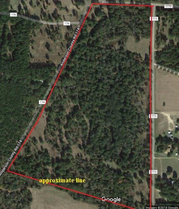 49 Acres Anderson County Road 174, Slocum, TX 75839