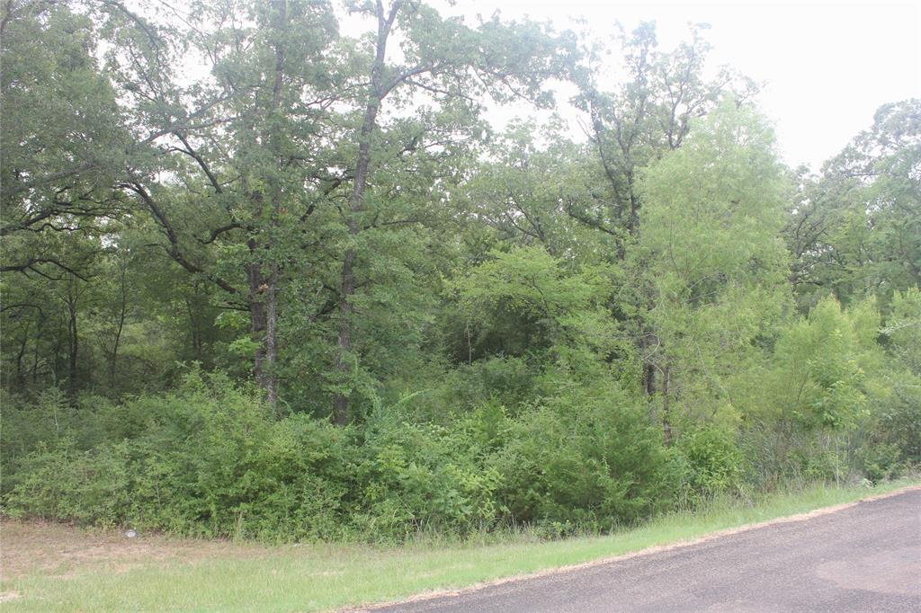 0000 Woodforest Sub, Franklin, TX 77856