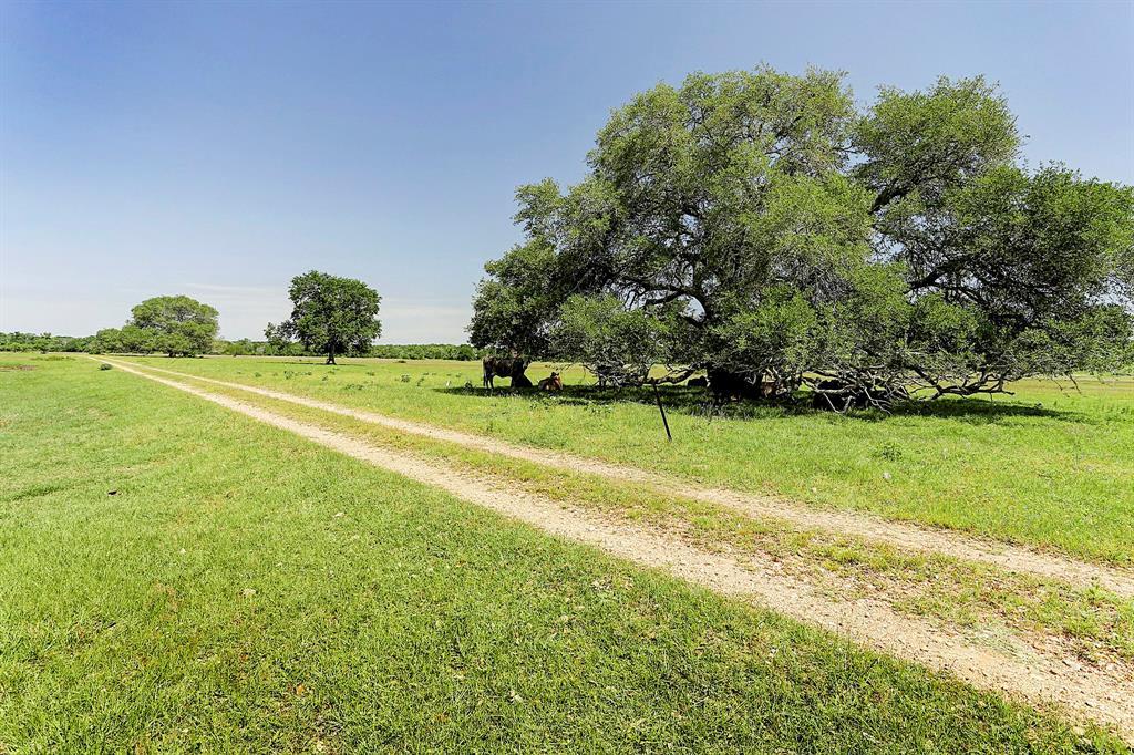 200 Rose Lane, Round Top, TX 78954