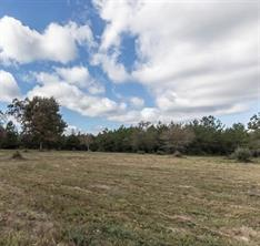 Houston Home at 1650 County Road 4770 Warren , TX , 77664-6483 For Sale