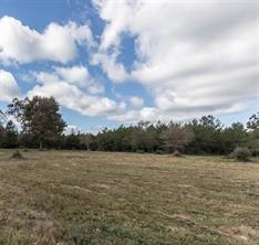 1650 County Road 4770, Warren, TX 77664