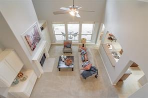 10 Filigree Pines Place, The Woodlands, TX 77382