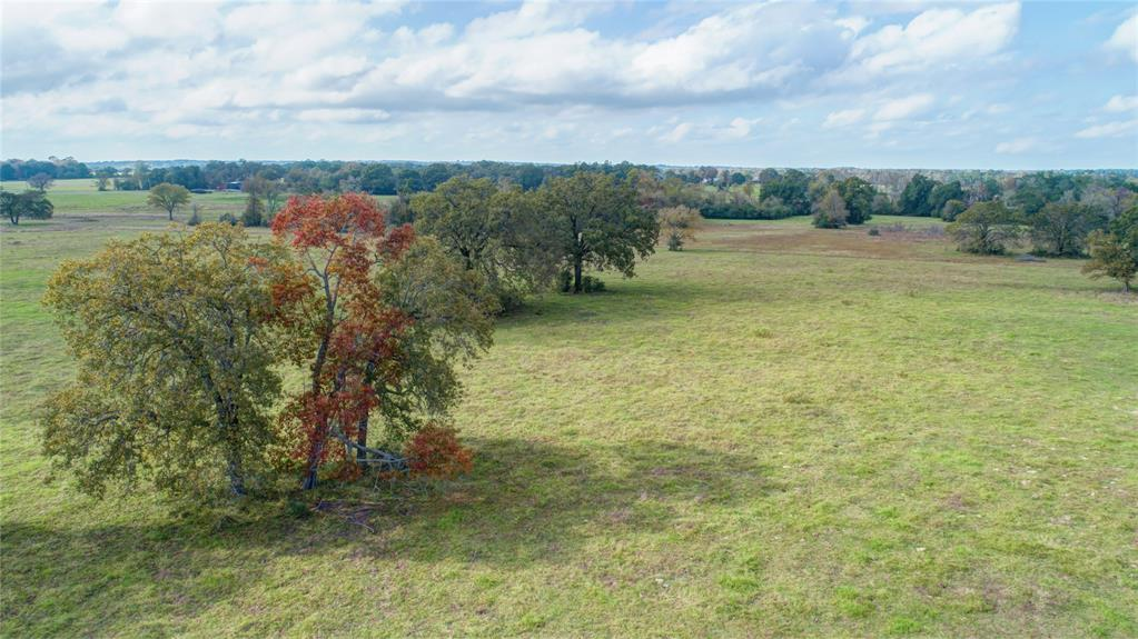55 Acres TBD Sloan Rd Road, Midway, TX 77852