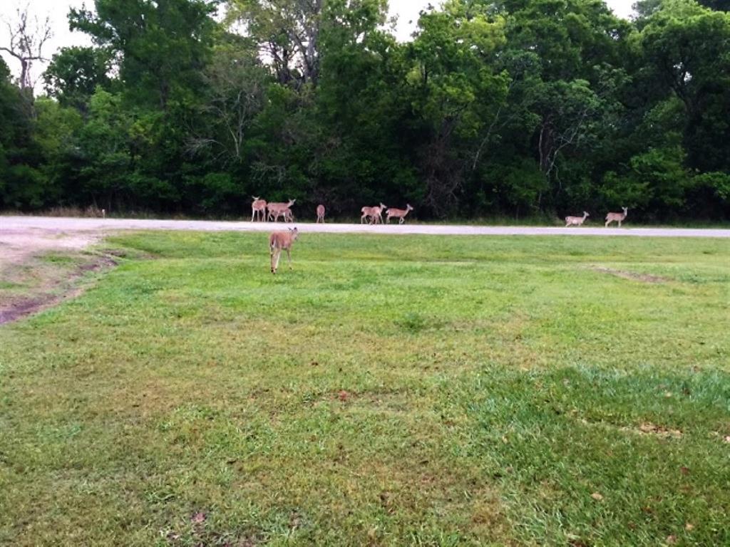 00 Deer Trail Drive