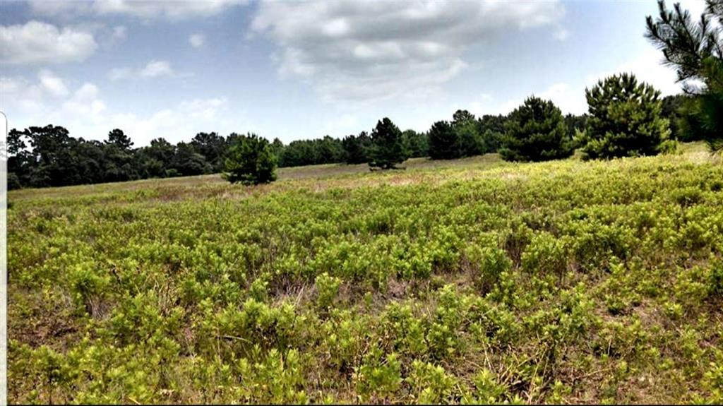 TBD Anderson County Road 114, Elkhart, TX 75839