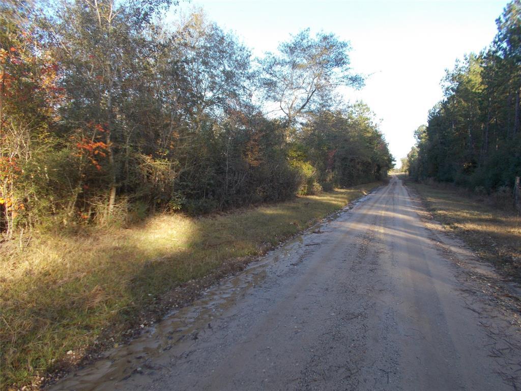 TBD CR 4502 Road, Hillister, TX 77624