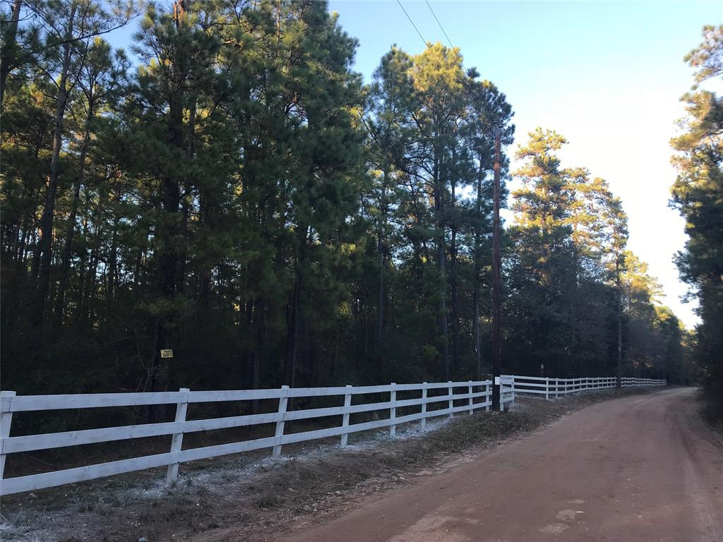 0 County Road 303, Plantersville, TX 77363