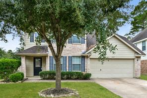 10007 Willow Wood